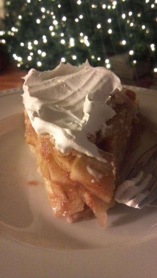 Tim sent this magazine-quality photo of the last surviving piece of pumpkin pie before he de-survived it.
