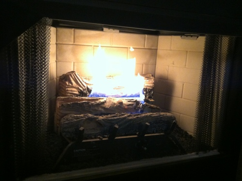$100+ bucks to keep the fireplace pumping out heat in this weather? That's a done deal.