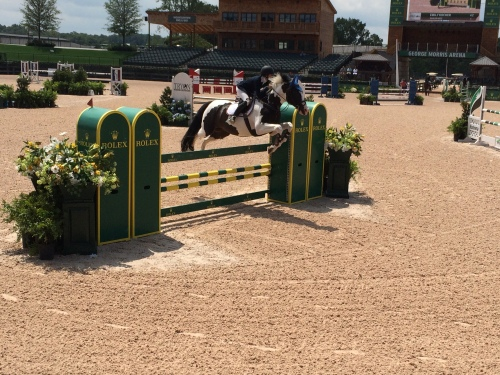 A horse worth six figures makes a routine jump at the Tryon International Equestrian Center. It's quite the place. Reid's significant other, Liz, knows how to do such things.